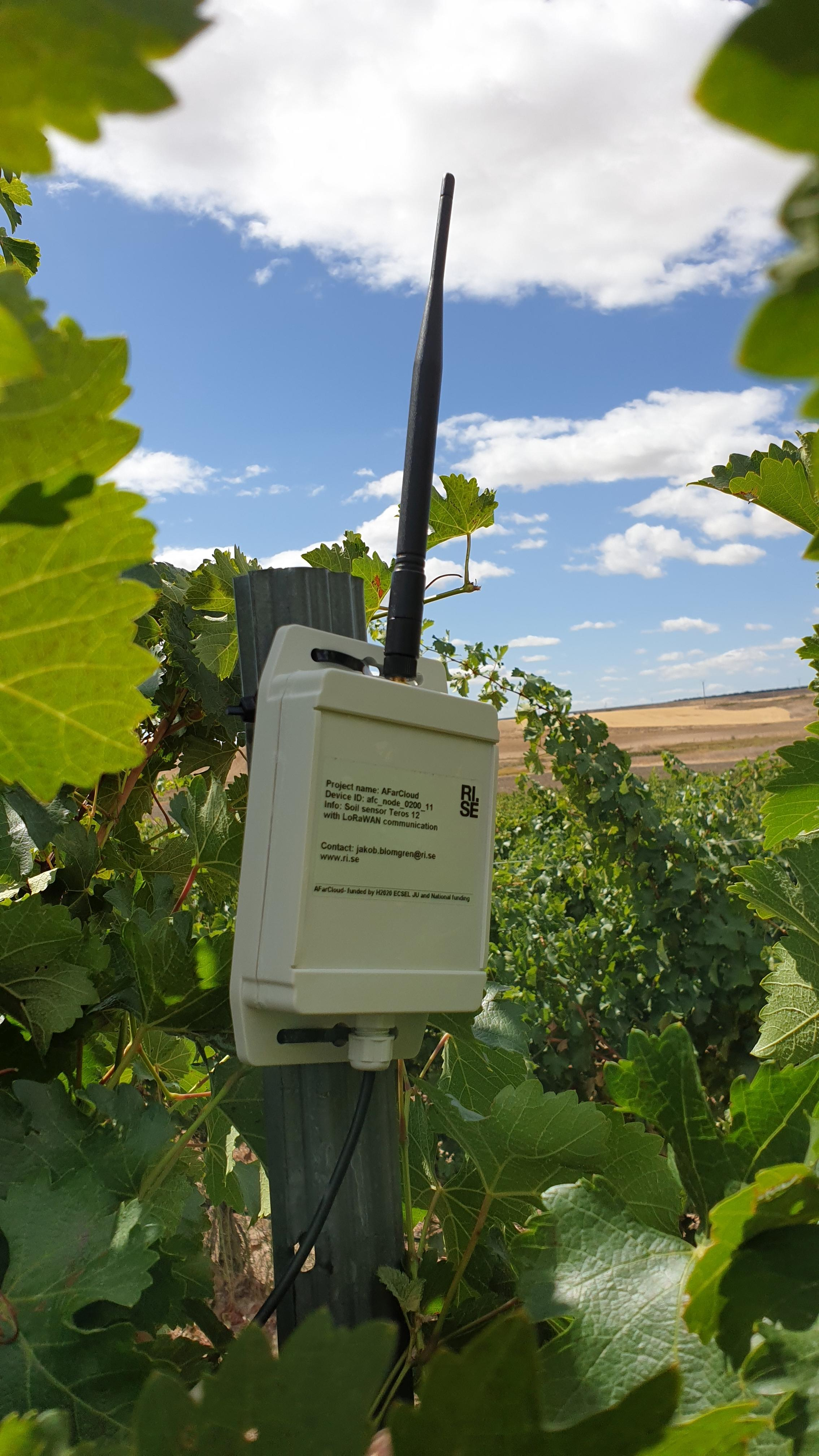 LoRaWAN sensor network for measuring soil properties at a vineyard