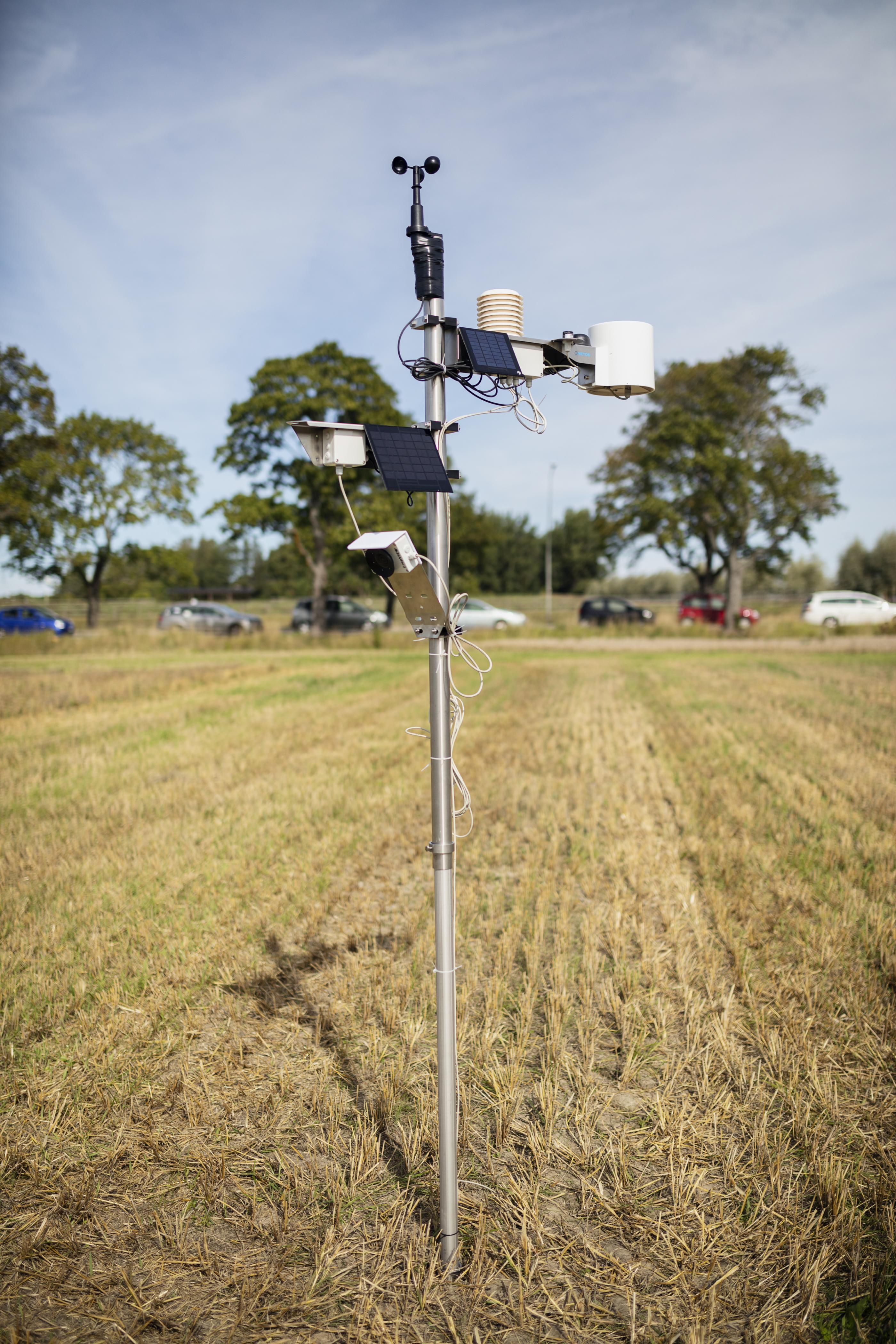 Sensors for crop production