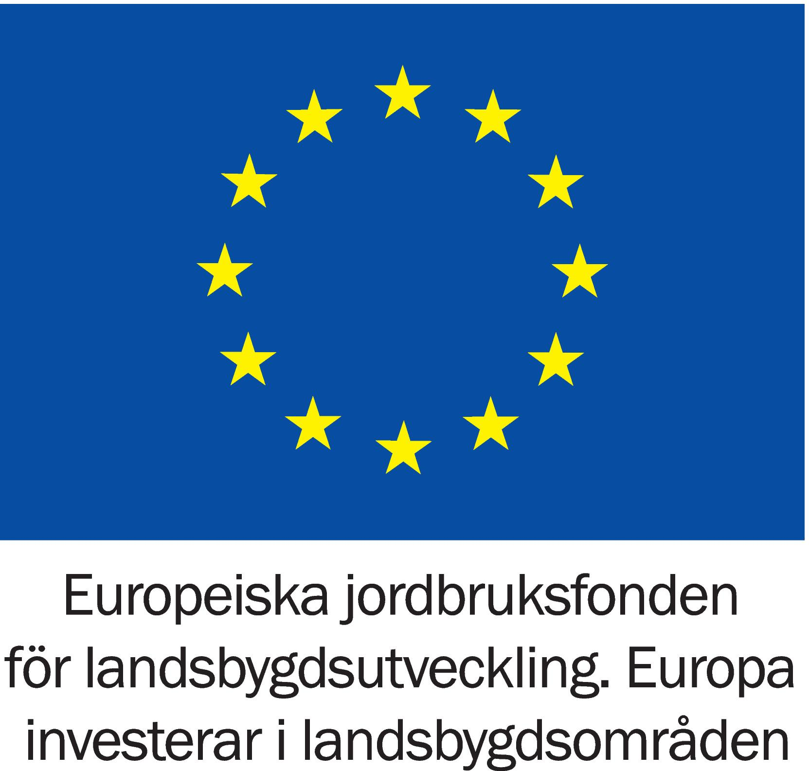 This project is finaced by The European Agricultural Fund for Rural Development: Europe investing in rural areas